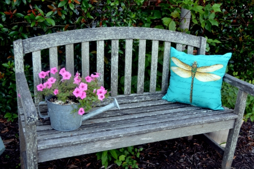 bench and petunias 7-19-2016 5-52-26 PM