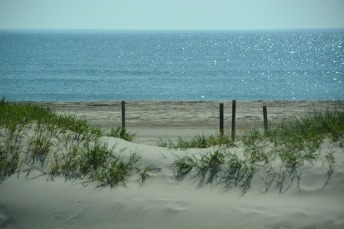 dune and ocean 7-24-2016 9-47-31 AM