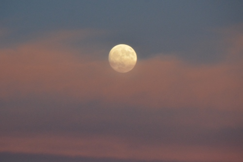 moon-rising2-10-14-2016-6-31-30-pm