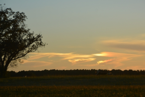 second-sundog-10-11-2016-6-19-28-pm