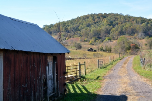 shed-and-barn-10-28-2016-12-01-55-pm