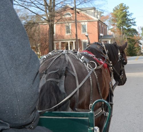 carriage-ride-12-3-2016-3-43-26-pm