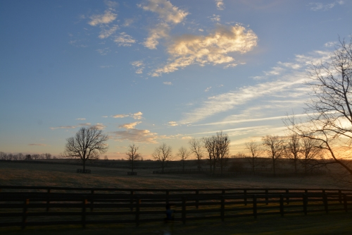 kentucky-morning-12-7-2016-8-53-50-am
