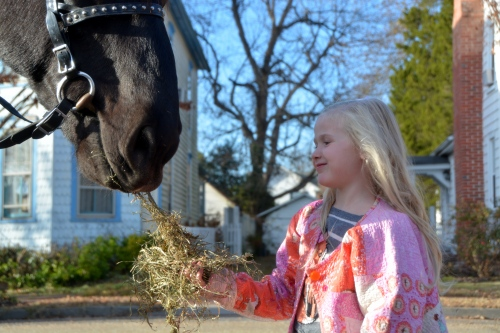 marion-feeding-hay-to-casey-12-3-2016-4-00-55-pm